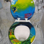 Beschilderde en afgelakte WC-bril, al 10 jaar in gebruik Adrienne van Wartum