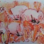Klaprozen, monotype- kleurpotlood op papier, 50 x 65 cm.   Adrienne van Wartum