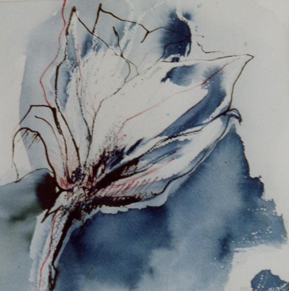 magnolia, aquarel en inkt, 30 x 40 cm